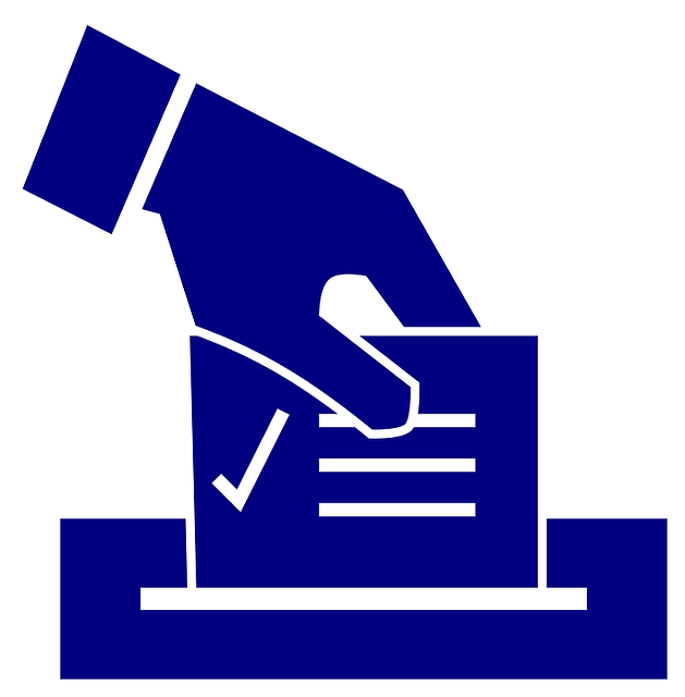 2019 School Elections